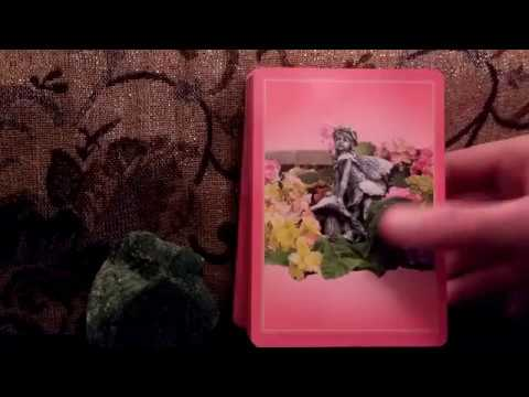 Daily Oracle Card Reading 7th March 2018 Daily guidance Flower Therapy tarot
