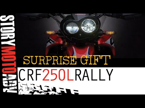 CRF 250L Rally-WE PAID THE PRICE | Enter...THE CHRONICLES OF Z