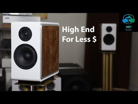 CSS P215 Bookshelf Speaker Review ! This Speaker Gave Me A Chill Down My Spine