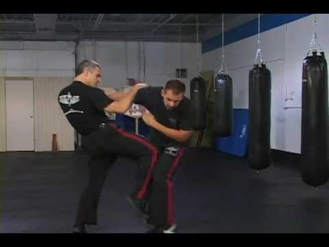 Mastering Krav Maga DVD Select Clips by David Kahn