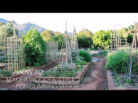 How To: Make a Wooden Pyramid Structure for Climbing Veggies