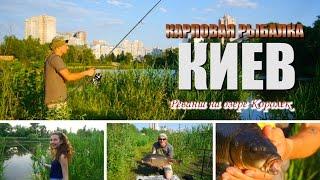 Часть 2. А в Киеве есть карпы по 9 кг! Реванш на озере Королек