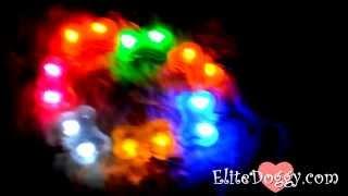 Светящийся кулон косточка для собак elitedoggy.com(EliteDoggy предлагает купить эксклюзивный светящийся брелок (адресник) в форме косточки для собак и кошек. Три..., 2015-09-04T15:33:53.000Z)