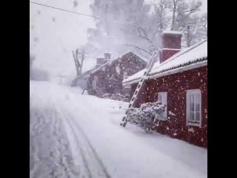 FINLANDIA: favolosa nevicata a falde grosse... è uno spettacolo!