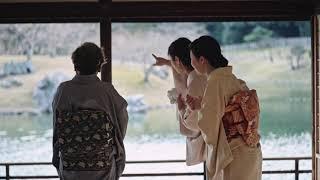 Beauty of Japan