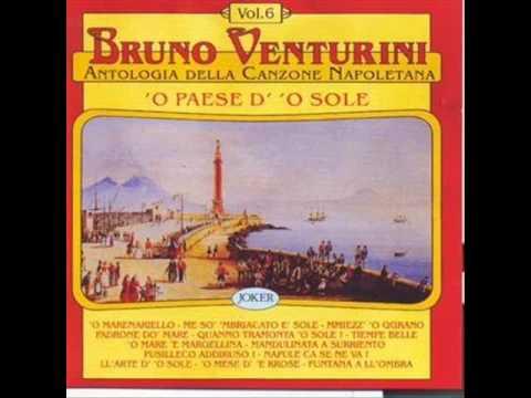Bruno Venturini - La Canzone Napoletana: I Ricordi