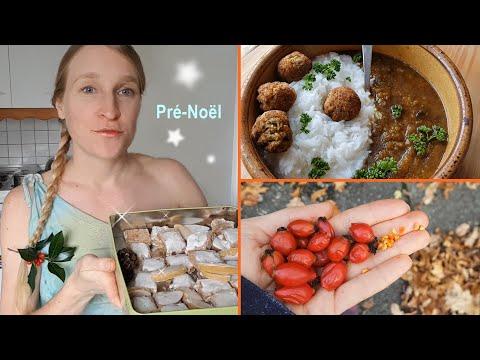 recette-calisson-et-leckerli-vegan-achats-chez-picard-forêt-repas-hclf
