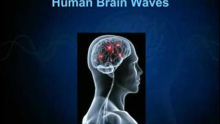 PART2: Human Brain Waves - Biopsychological Effects of Ascension