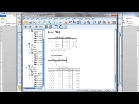 How to compute Cronbach's Alpha (reliability) in SPSS