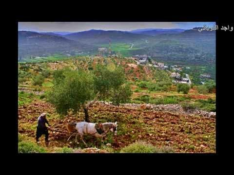 الريف الفلسطيني