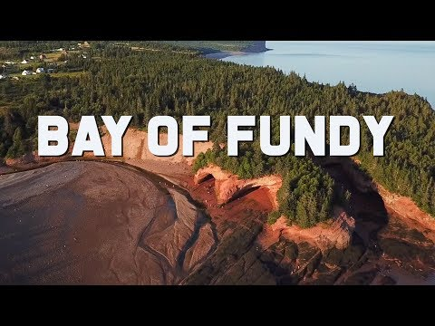 Bay Of Fundy | High Tides And Adventure | Canada Travel Vlog  | The Planet D