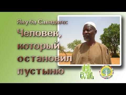 Человек, который остановил пустыню (русская озвучка)