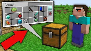 Minecraft NOOB vs PRO: HOW THIS CHEST WITH SECRET ITEMS APPEARED IN VILLAGE? Challenge 100% trolling