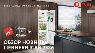 встраиваемый холодильник Liebherr ICBN 3386 обзор