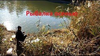Рыбалка осенью на канале