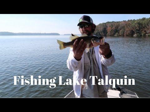 Lake Talquin Crappie & Bass Fishing
