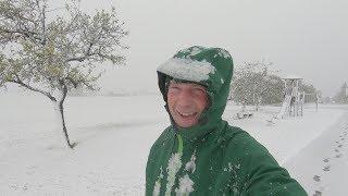 Erster Schnee im Schwarzwald