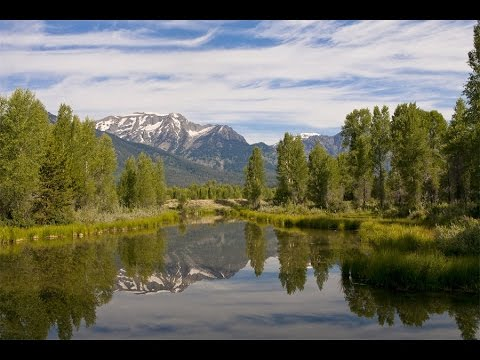 Mountain Living At Its Finest In Jackson, Wyoming