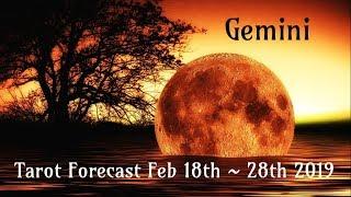gemini spirit totally has your back feb 18th 28th