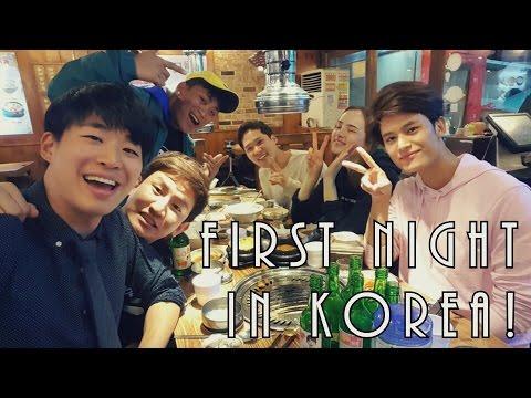 FIRST NIGHT IN SEOUL, KOREA! [Korean BBQ & Drinking Games] ft. KOREAN BROS | Korea Vlog 1