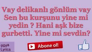 Vay Delikanlı Gönlüm Vay - Ahmet Şafak   Lyrics