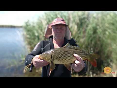 Рыбалка в Казахстане дельта Или июль 2019