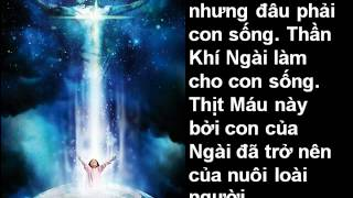 Hồng Ân Chúa Bao La - Linh Mục Thiện Cẩm