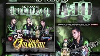 Los De Guamuchil - No Somos De Acero (Estudio 2016)