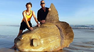 10 Most Unusual Shoreline Discoveries thumbnail