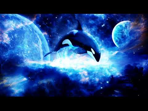 Deep Meditation & Relaxation With The Sound Of The Killer Whale (15 Minutes)