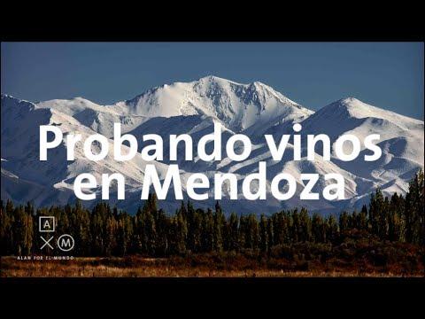 Probando vinos en Mendoza   Argentina #10 Alan por el mundo