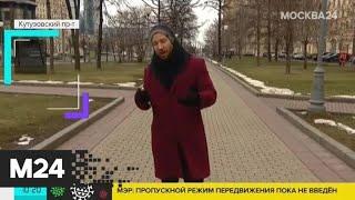 """""""Утро"""": юго-западный ветер ожидается в столице 3 апреля - Москва 24"""
