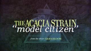 Play Model Citizen