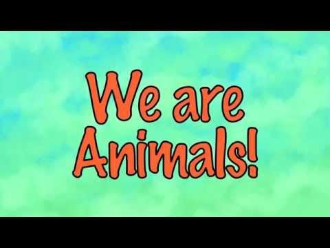 We are animals - Mr Diaz
