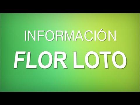 """INFORMACIÓN - FLOR DE LOTO """"NELUMBO""""  [CUIDADOS]"""