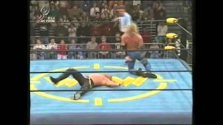 Finisher Compilation - Diamond Dallas Page