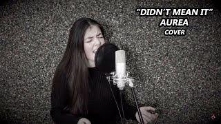 Baixar Aurea - I Didn't Mean It (Bruna Costa Cover)