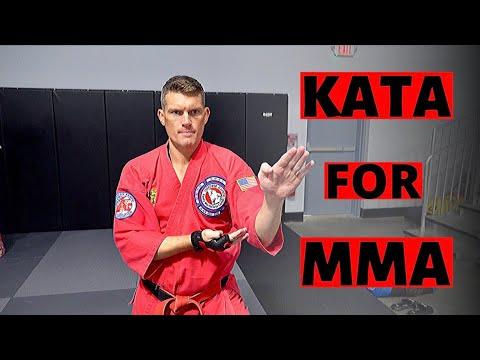 Benefits Of Training KATA For MMA | VLOG | Karate W/ Wonderboy