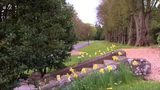 Обучение в Великобритании: фильм о школе Strathallan School