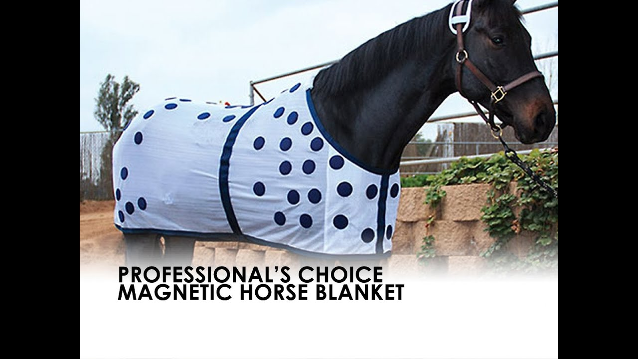 Professional S Choice Magnetic Horse Blanket Sheet