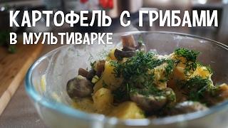 Картофель с грибами в мультиварке. Вкусные рецепты картофеля с грибами в мультиварке