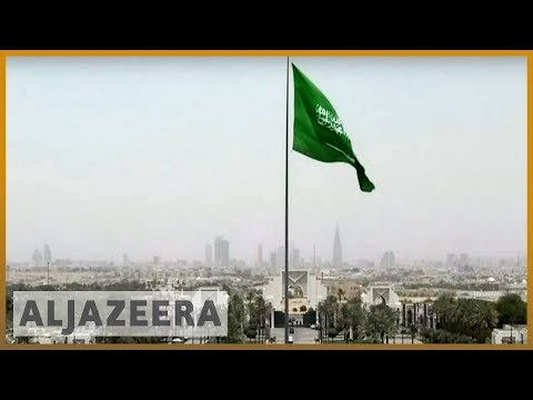 🇸🇦 Saudi arrests 11 princes over economic protest: SPA