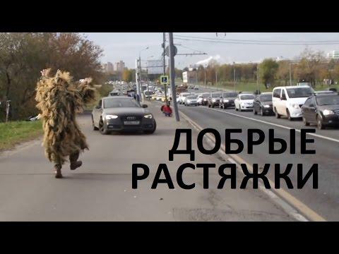 Вектор Движения №