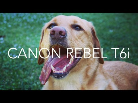 Camera and Field Test   Canon Rebel T6i (750D)   GOOD FOR VLOGGING!!