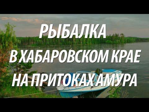 познакомлюсь гермафродиткои в хабаровском крае