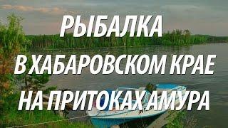 РЫБАЛКА НА АМУРЕ В ХАБАРОВСКОМ КРАЕ(Рыбалка на Амуре по различной рыбе в Хабаровском крае на Дальнем Востоке. Были пойманы такие виды рыб как:..., 2016-11-12T15:17:33.000Z)