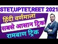 Gambar cover हिंदी व्याकरण वर्णमालाSUPERTET,UPTET,REET 2021