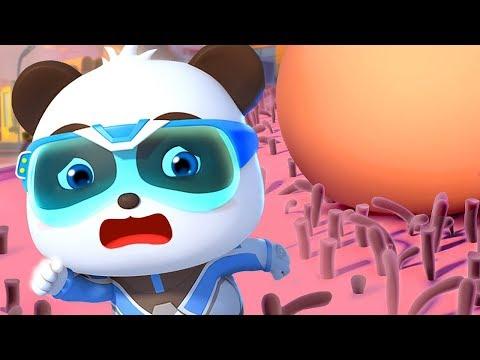 Biệt đội Siêu Cứu Hộ BabyBus  Bộ Sưu Tập Gấu Trúc Kiki&Miumiu   Hoạt Hình - Nhạc Thiếu Nhi   BabyBus