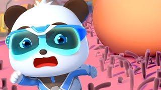 Biệt đội siêu cứu hộ BabyBus| Bộ sưu tập gấu trúc Kiki&Miumiu | Hoạt hình - Nhạc thiếu nhi | BabyBus