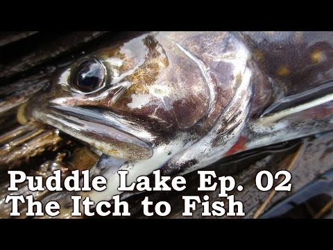 """""""Puddle Lake"""" Expedition (part 2 of 9): The Itch To Fish,  Venison, and Labrador Tea"""
